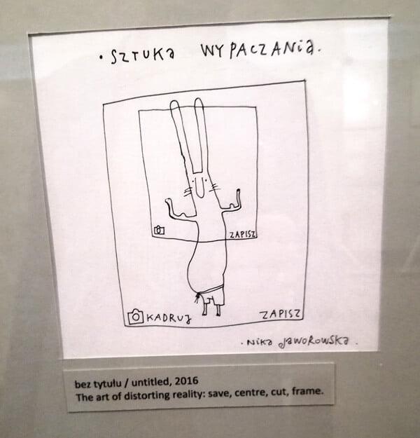 Zajac szary obywatel 04 - Muzeum Karykatury